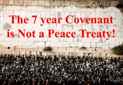The 7 Year Covenant is Not a Peace Treaty!